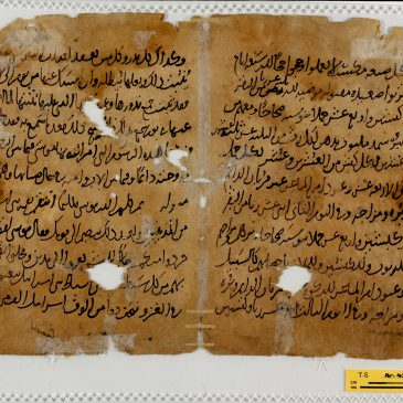 Biblical translations into Christian Arabic preserved in the Cairo Genizah collections